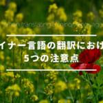 マイナー言語の翻訳における5つの注意点