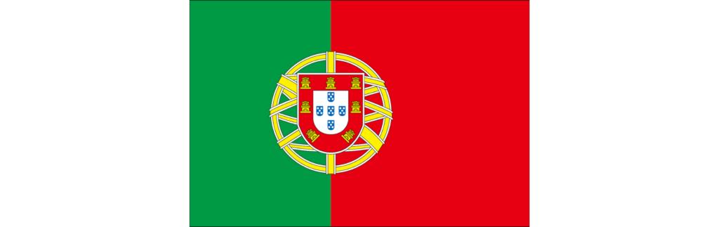 ポルトガル語翻訳、校閲・校正